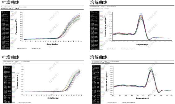 荧光定量pcr扩增曲线溶解曲线